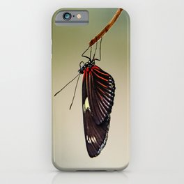 Hanging Doris Longwing Butterfly iPhone Case
