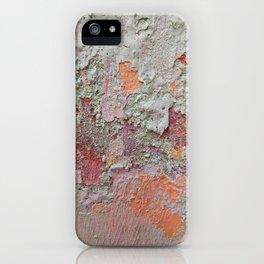 017 iPhone Case