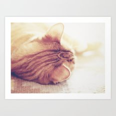 Lazy Day Art Print