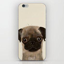 little pug iPhone Skin