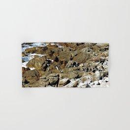 Penguin Colony Boulders Beach, Cape Town, South Africa Hand & Bath Towel