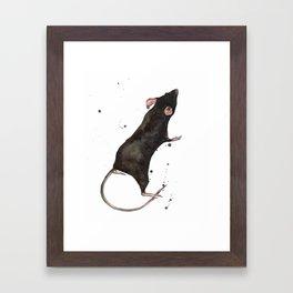 Rat, rodent painting, black rat, ratty, watercolor rat, rat pillow cover Framed Art Print