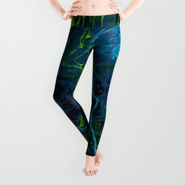 Rapture Leggings