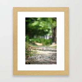 Walking your Path Framed Art Print