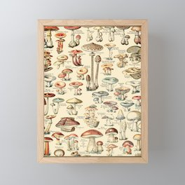 Trippy Vintage Mushroom Chart // Champignons by Adolphe Millot XL 19th Century Science Artwork Framed Mini Art Print
