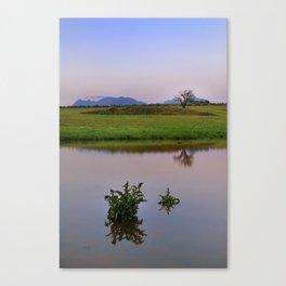 Serenity sunset at the lagoon. Spring dreams Canvas Print