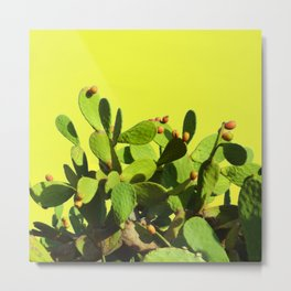 Cactus fruit & yellow Metal Print