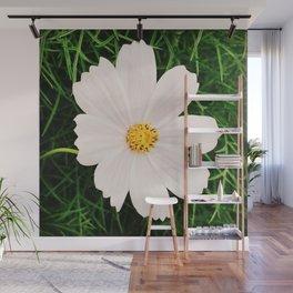 In Bloom 2019 - Wild Flower Wall Mural