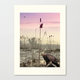 Eagles in Winter Canvas Print