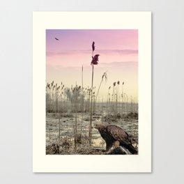 Eagles in Winter Canvas Print