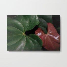 Leaves III Metal Print