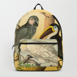 6 Birds Backpack