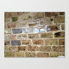 Brick, Coral, Wall, Historic St. Thomas, USVI Canvas Print