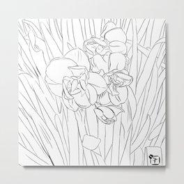 daffodil lines Metal Print