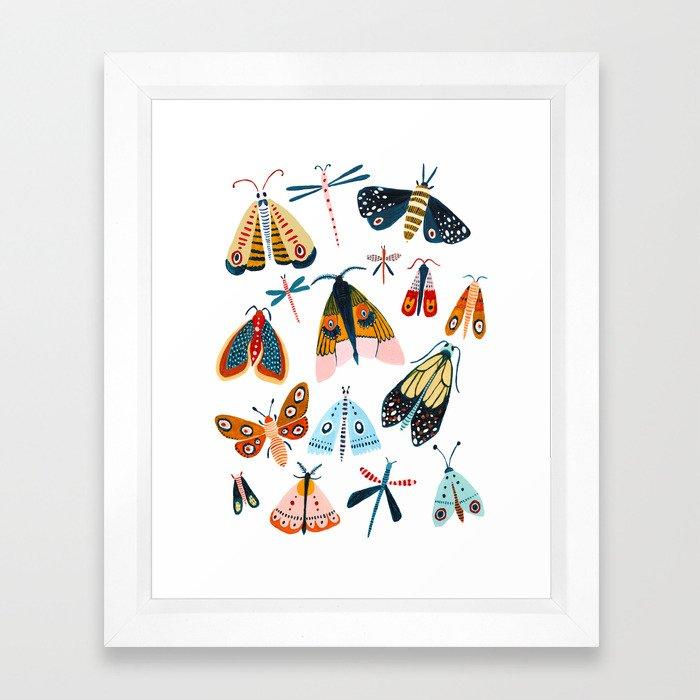 Moth Species Framed Art Print