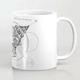 Geometry of a Charonia tritonis Coffee Mug
