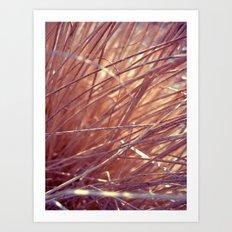 autumn straw Art Print