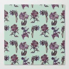 Botanical Florals   Vintage Raspberry Canvas Print