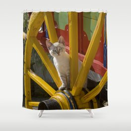 kitten playing on an Algarve cart, Portugal Shower Curtain
