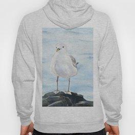Seagull 2 Hoody