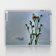 Compass Plant Laptop & iPad Skin