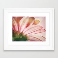sparkle Framed Art Prints featuring sparkle by  Alexia Miles photography