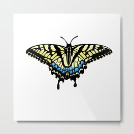 Swallowtail Tiger Butterfly Metal Print