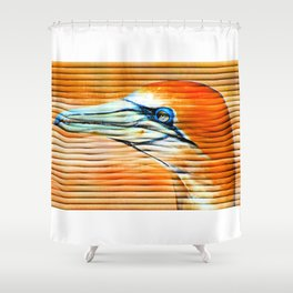 The beautiful gannets I Shower Curtain