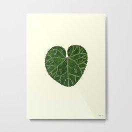 Cyclamen leaf - yellow Metal Print