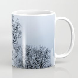 Naked tree in a foggy day Coffee Mug