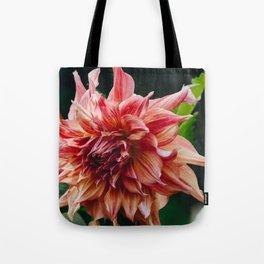 Dahlia (Penhill Watermelon) Tote Bag