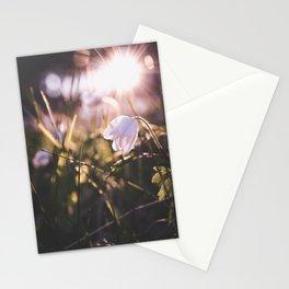 Spring sunshine Stationery Cards