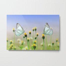 Butterflies on a Plant Metal Print