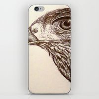 hawk iPhone & iPod Skins featuring Hawk by Leslie Creveling