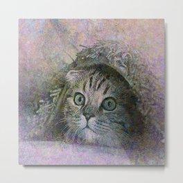 The Kitten Metal Print