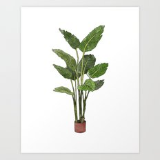 Houseplant Art Print