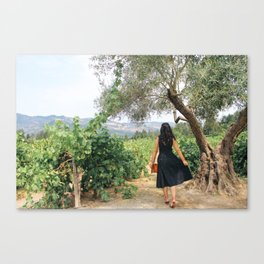 Napa Valley Fairytale Canvas Print