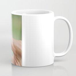 Meeting Tiny Frog Coffee Mug
