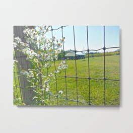 Poking Flowers Metal Print