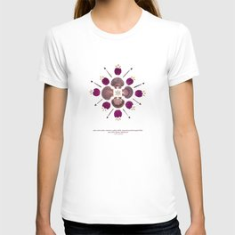 nature mandala... pine cone seeds, mexican scallop shells, pressed purple bougainvillea... T-shirt