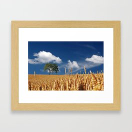 summer cereals sun Framed Art Print