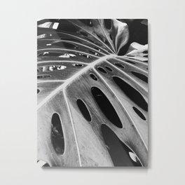 b&w banana leaf Metal Print