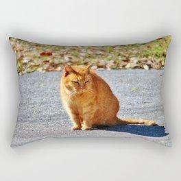 Neighborhood Cat Rectangular Pillow
