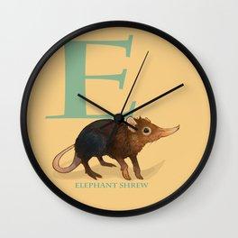 E is for Elephant Shrew: Under Appreciated Animals™, unusual creatures ABC nursery decor for kids Wall Clock
