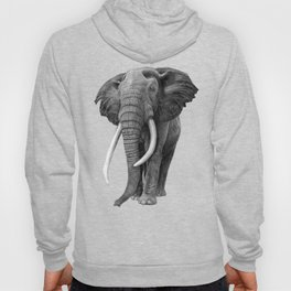 Bull elephant - Drawing in pencil Hoody