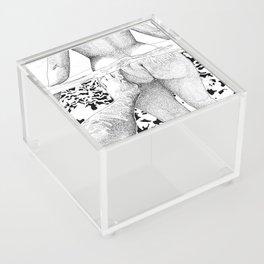 The Swim Acrylic Box