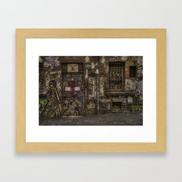 eggHDR1449 Framed Art Print