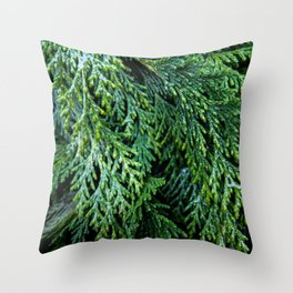 Pacific Redcedar Throw Pillow