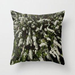 The white spirea shrub blooms in the summer garden Throw Pillow