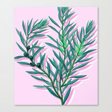 Olive branches in pink and green Canvas Print